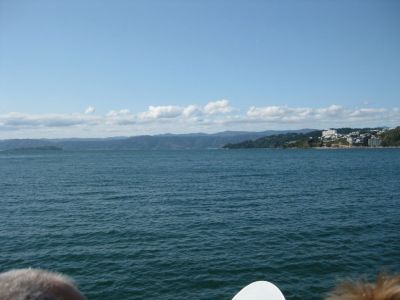 looking our across harbour